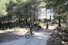 Fotos de la 12 cursa BTT A per la Cabra de Tivissa (1 de 2)