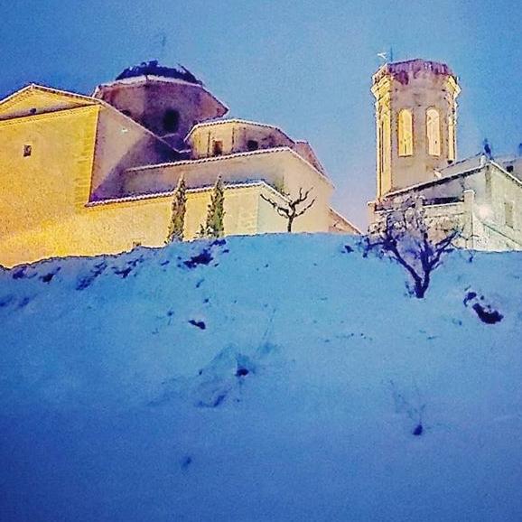 Imágenes de la nevada del 19 y 20 de Enero de 2020 (Tinenza de Benifasá, Parque Natural dels Ports, sierra de Montsià, Terra Alta)
