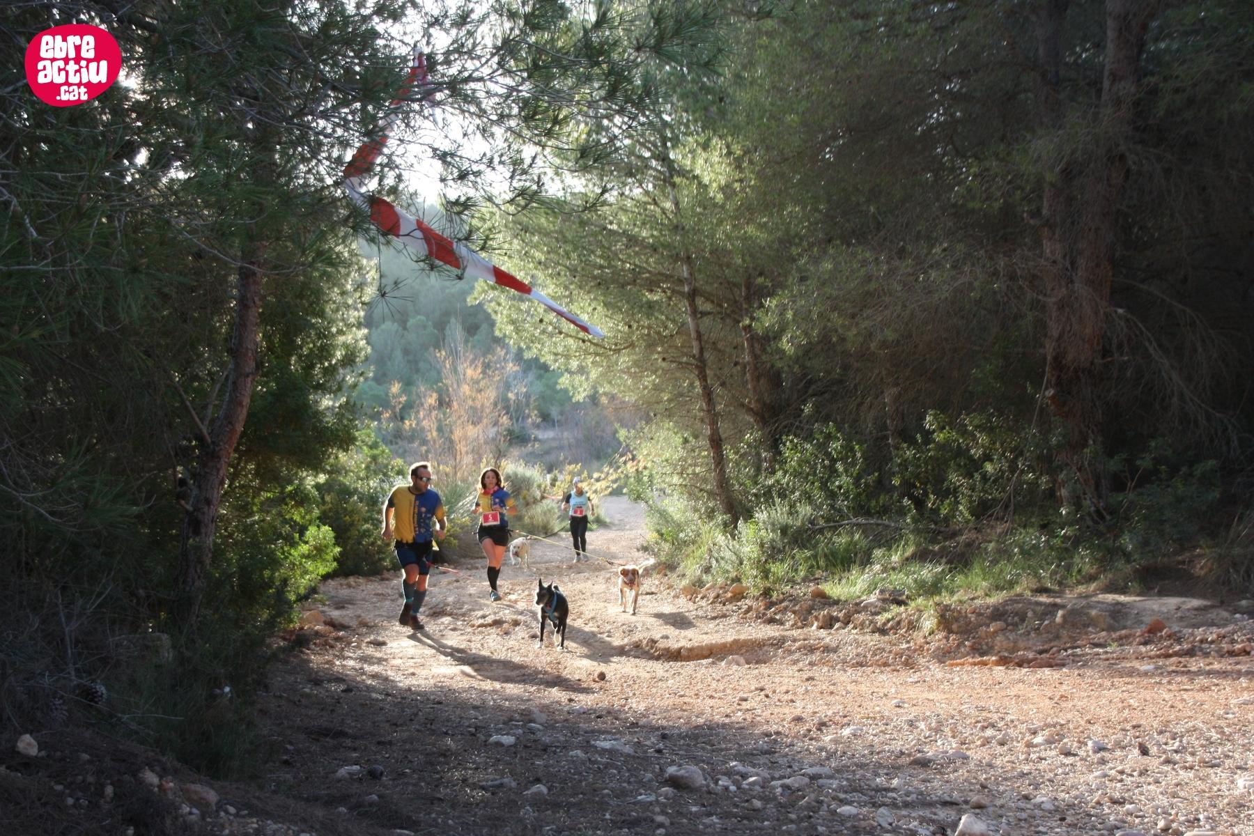 Fotos del 3r Canicròs de l'Aldea (22/12/2019)