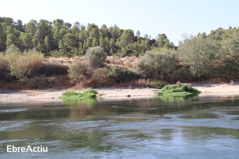 Us apropem el territori a casa: descobrint l'essència de l'Ebre amb Lo Roget